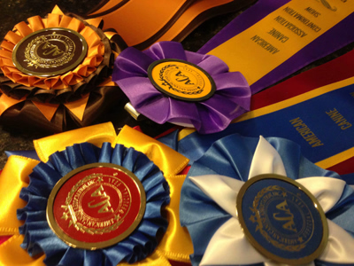 lorilee, thomas, dog, breeder, ribbons, whiting, ks, lori, lee, lorilee-thomas, usda, inspection, reports, aca, dog shows